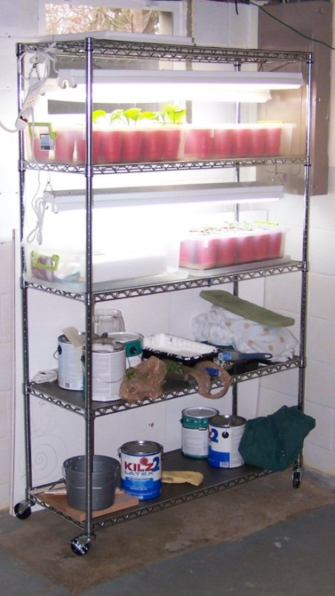 Mobile garden on a rack.